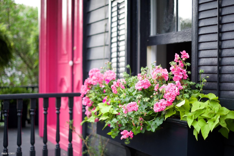 Restyling a Garden House: Paint It Black | Blog | ROGER + CHRIS