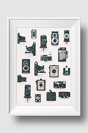 Vintage Camera Collection Print