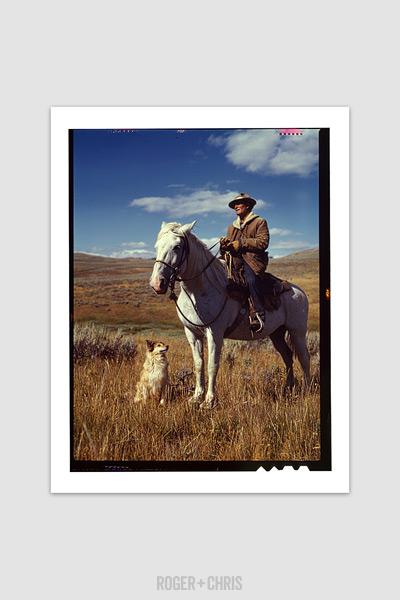 quot shepherd and dog quot print roger chris